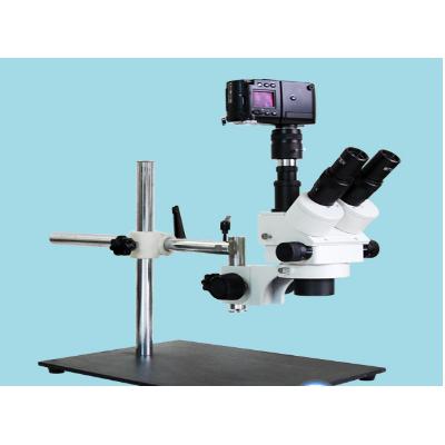 上海光学 显微镜XTZ-EWC