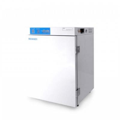 恒悦(跃进) 二氧化碳细胞培养箱WJ