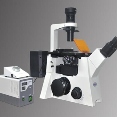 明美 倒置荧光显微镜MF53