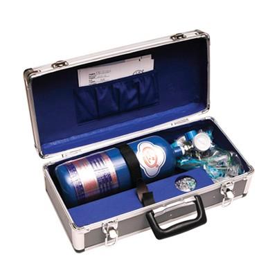 金新兴 单表铝箱供氧器