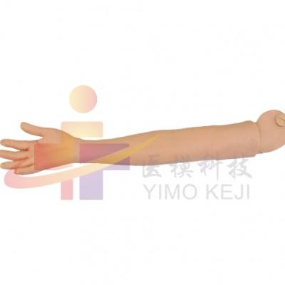 医模 可更换的静脉穿刺训练手臂(右手臂)