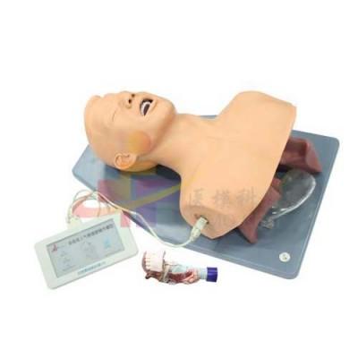 医模 带解剖结构的成人气管插管操作模型