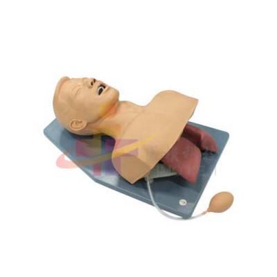 医模 成人喉罩通气模型