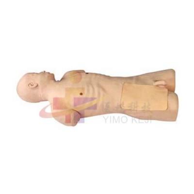 医模 股动脉穿刺模拟人