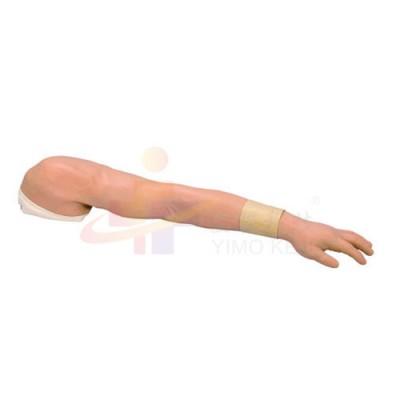 医模 全功能注射操作手臂模型