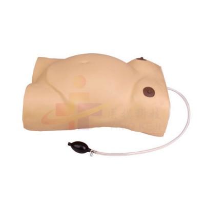 医模 孕妇腹部触诊及胎心监护模型