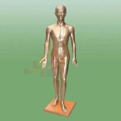 医模 针灸铜人
