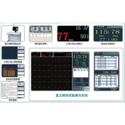 斯坦德利 SHUT-100型 倾斜试验监测软件系统厂家