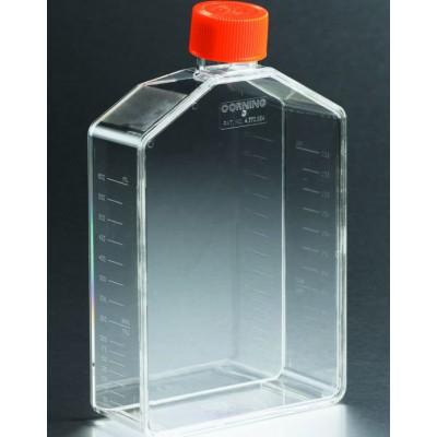中在医疗细胞培养瓶 细胞培养玻璃瓶定做 滤盖细胞培养瓶规格