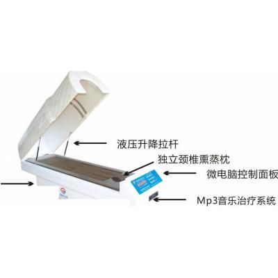 国健 智能数码中药熏蒸机 全自动全身平躺熏蒸舱治疗仪供应商