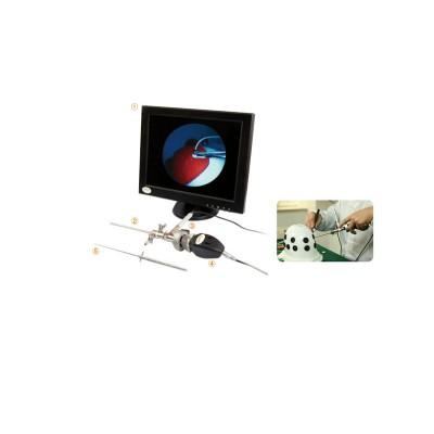 和怡顺 Arthrotrain关节镜培训系统 全仿真关节镜手术系统厂家
