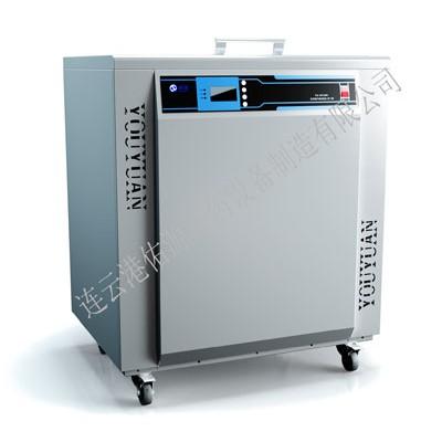佑源超声波清洗机 实验室超声波清洗机价格 医用超声波清洗机