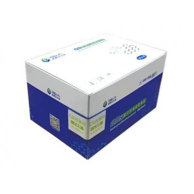 蛋白检测试剂盒 新赛亚反应蛋白检测试剂盒  C反应蛋白检测试剂盒