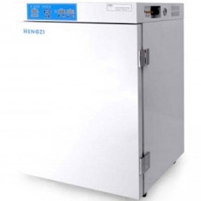 恒跃(跃进) 二氧化碳细胞培养箱WJ