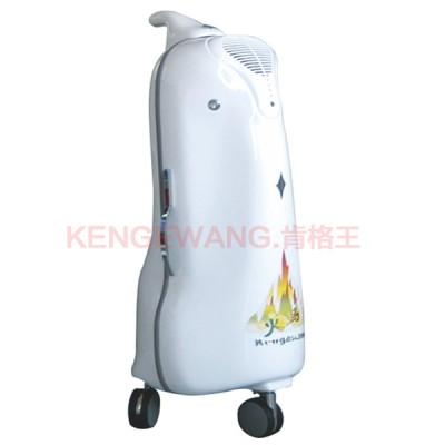臭氧空气消毒机 丹翔电器臭氧空气消毒机 臭氧空气消毒机价格