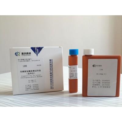鼎润 速率法乳酸脱氢酶检测试剂盒 乳酸脱氢酶测定试剂盒价格