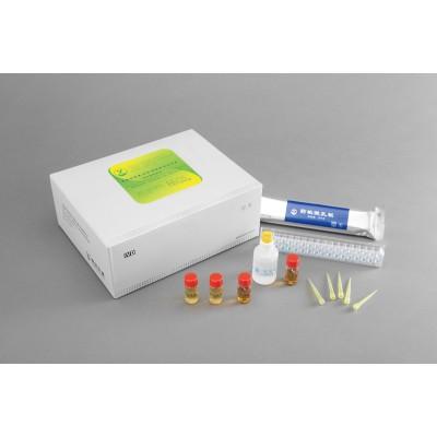 支原体检测试剂盒 阳光生物支原体培养试剂盒 药敏检测试剂盒