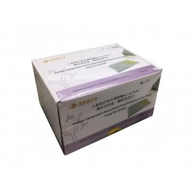 人脂蛋白相关磷脂酶A2(Lp-PLA2) 海格德测定试剂盒 酶联免疫法