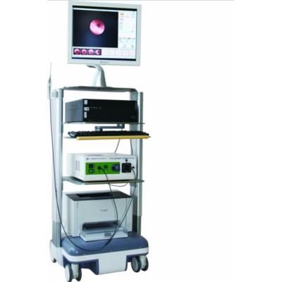 博莱德恩 医用乳导管内窥镜系统 内窥镜摄像光源系统厂家