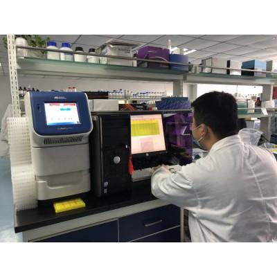 定量pcr\酵母杂交cDNA文库构建\微卫星\SNP分型\RACE\原位杂交fish